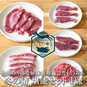 和歌山産 ジビエ 猪肉セット 1kg(5種類各200g) イノシシ肉 紀州 那智勝浦 色川 だものみち 肩ロース(ステーキ) ロース(ステーキ) バラ肉(スライス)モモ肉(スライス) ミンチ 国産 紀