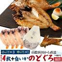 のどぐろ福袋 のどぐろ4枚 + 白いか1枚 干物セット 焼き魚 焼魚 魚 さかな ひもの 一夜干し 贈り物 贈答品 贈答用 お…