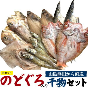のどぐろ2尾入り 高級干物セット(6種14枚セット)のどぐろ 笹カレイ アマダイ カマス スルメイカ ニギス 詰め合わせ ギフトセット 国産 島根産 山口産 焼き魚 焼魚 魚 さかな ひもの さかな