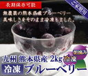 熊本県産 スムージー用 大盛り 冷凍ブルーベリー 2キロ ジュース 国産 ブルーベリー ルテイン 人気 2kg