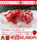 熊本産スムージー用中盛り冷凍イチゴ2キロ【売れ筋】【ギフト】【いちご】【苺】