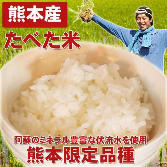 【定期購入12ヶ月】熊本産たべた米5キロ