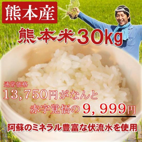 【赤字覚悟の特別価格】熊本米30キロ