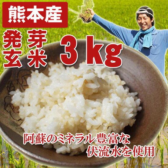 熊本産 農薬未使用 発芽玄米3キロ
