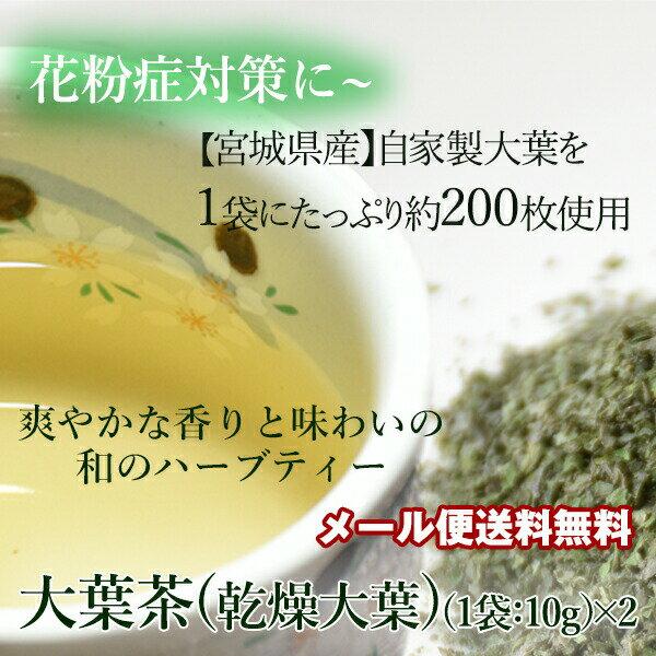 大葉茶(乾燥大葉)国産:宮城県産 10g×2袋 メール便送料無料しそ シソ 日本 自家製 爽やかな味 すがすがしい すっきり 風味 ごはん おにぎり ふりかけ 花粉症対策 お茶 健康茶 和 ハーブティ
