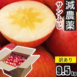 11/10頃から発送 減農薬 サンふじ 訳あり 9.5kg 山形県 りんご フルーツ 送料無料 家庭用林檎 リンゴ さんふじ 産地直送 お取り寄せ りんご 蜜 蜜入り サンフジ キロ 果物 ふじ わけあり 訳有