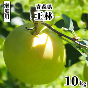 減農薬 青森県 りんご 王林 訳あり 10kg 家庭用 わけあり 青りんご【林檎 リンゴ おうりん 果物 フルーツ 化学肥料不使用 10キロ 送料無料 ギフト】