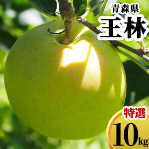減農薬 青森県 りんご 王林 10kg 優秀 贈答用 青りんご【林檎 リンゴ おうりん 果物 フルーツ 化学肥料不使用 10キロ 送料無料 ギフト】