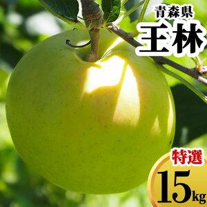 減農薬 青森県 りんご 王林 15kg 優秀 贈答用 青りんご【林檎 リンゴ おうりん 果物 フルーツ 化学肥料不使用 15キロ 送料無料 ギフト】
