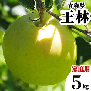 減農薬 青森県 りんご 王林 訳あり 5kg 家庭用 わけあり 青りんご【林檎 リンゴ おうりん 果物 フルーツ 化学肥料不使用 5キロ 送料無料】