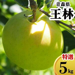 減農薬 青森県 りんご 王林 5kg 優秀 贈答用 青りんご【林檎 リンゴ おうりん 果物 フルーツ 化学肥料不使用 5キロ 送料無料 ギフト】