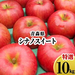 【発送:10月下旬〜】青森県 りんご ギフト 10kg シナノスイート 林檎 リンゴ 果物 フルーツ 10キロ 産地直送 送料無料 プレゼント 贈答用