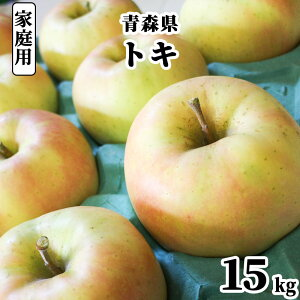 【発送:10月中旬〜】 青森県 りんご 訳あり 15kg トキ 家庭用 わけあり 林檎 リンゴ 青りんご 果物 フルーツ 自宅用 産地直送 送料無料