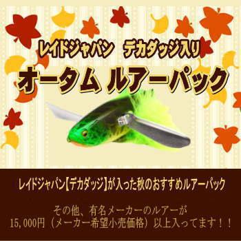 レイドジャパン デカダッジ入り オータムルアーパック RAID JAPAN