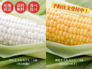 【送料無料】北海道富良野産 とうもろこし 8本セット