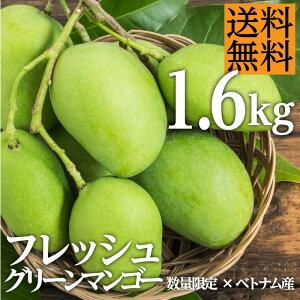 【送料無料】 グリーンマンゴー ベトナム産 1.6kg 約5玉〜8玉 カッチュー種 準備ができ次第出荷します 生 フレッシュ プレゼント フルーツギフト ギフト 夏 希少 期間限定 トロピカルフルーツ