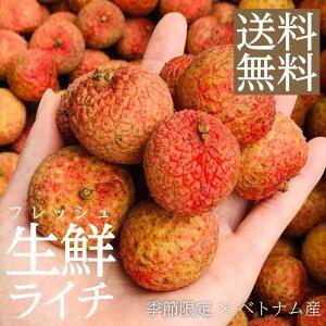 【送料無料】 フレッシュ 生 ライチ 3kg ベトナム産 予約 5月下旬以降順次発送 トロピカルフルーツ フルーツギフト お中元 フルーツ 果物