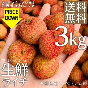 【送料無料】 フレッシュ 生 ライチ 3kg ベトナム産 予約 5月下旬以降順次発送 トロピカルフルーツ フルーツ ギフト お中元 フルーツ 果物