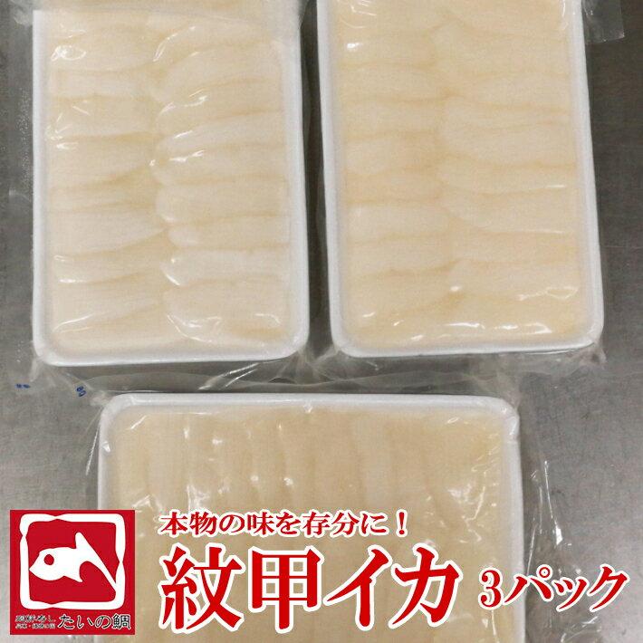 甲イカ 20枚 3パック イカ 甲イカ 寿司 刺身 新鮮 鮮度抜群 たいの鯛 海鮮 いか