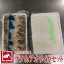 イカゲソ&アオリイカセット 300g+240g  イカ お刺身 寿司 おつまみ 酒の肴 逸品 手巻き寿司 海鮮丼 いかゲソ 烏賊 …