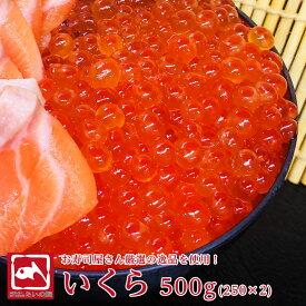 旨味凝縮いくら500g (250グラム 2パック) 魚卵 イクラ トラウトサーモン ごはんのお供 たいの鯛 醤油いくら ikura ホワイトデー 入学 新生活