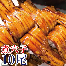 ふんわり 煮穴子フィレ 10尾 300グラム 海鮮 肴 つまみ あて アナゴ 煮アナゴ 煮穴子 穴子 ギフト ごはんのお供にも たいの鯛 あなご