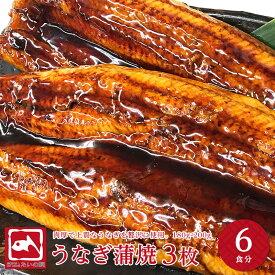 肉厚特大うなぎ 約6人前 3枚 180gから200g ウナギの蒲焼 3枚 ウナギ 鰻 蒲焼き うなぎ 贈り物 プレゼント 魚介 グルメ お歳暮 ギフトお中元 父の日 送料無料