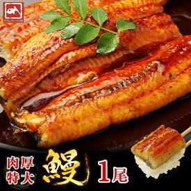 超特大サイズ 肉厚特大うなぎ 約360g〜400g程度×1尾たいの鯛 ウナギの蒲焼 鰻 蒲焼き うなぎ 贈り物 プレゼント 海鮮 ギフト 送料無料 蒲焼 訳あり 養殖 真空パック 父の日 お中元 土用 丑の日