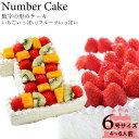 誕生日ケーキ アニバーサリーケーキ☆記念の数字を形に!(※1ケタのみ)『ナンバーケーキ』6号 フルーツといちごの2タイプ☆お誕生日 はもちろん、敬老の日 も!数字の形 の ケーキ でお祝いしよう!