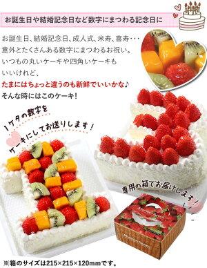記念の数字を形にできちゃう!(※1ケタのみ)数字のケーキでアニバーサリー『ナンバーケーキ』6号フルーツいっぱいといちごいっぱいの2タイプ☆【大陸楽天市場店/caketairiku】