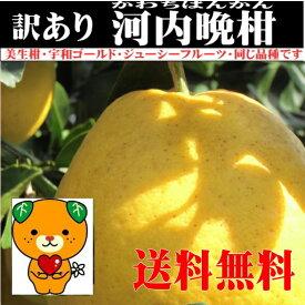 河内晩柑 約9kg+1kg(1kgは、保証分) 愛媛産 送料無料 <訳あり>家庭用