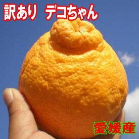 愛媛  デコちゃん(通称デコポン)10kg送料無料 北海道・沖縄送料別途いります <少し 訳あり>只今 値引き販売中