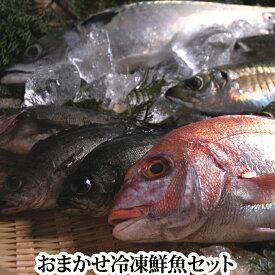 送料無料 おまかせ冷凍 鮮魚セット 下処理 後、真空に近い状態にパック レシピ付き( 魚 詰め合わせ ボックス BOX 真空 生 )