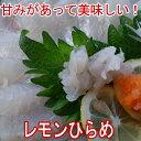 レモンひらめ600g、大分県産( 平目 ヒラメ 養殖 フルーツ魚 )3〜4人前