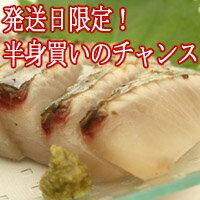 鰆 ( さわら サワラ )3kgの半身( 福岡県、高知県、瀬戸内海のいずれか )お刺身、たたきは格別です。2個買いのみ指定日承ります。2個買い同一カ所のお届けで送料無料【RCP】