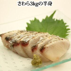 鰆 ( さわら サワラ )3kgの半身( 福岡県 高知県 瀬戸内海 のいずれか )お 刺身 たたき は格別です。2個買い同一カ所のお届けで 送料無料 寒鰆 かんざわら 【RCP】