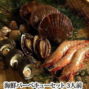 海鮮バーベキューAセット(アワビ3個サザエ3個ハマグリ2L6個ホタテ3個エビ(解凍)3個)(あわび鮑さざえ栄螺はまぐり蛤海老)