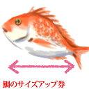 鯛 のサイズアップ券 『 お食い初め セット内の鯛専用』100gアップごとの金額になります。( タイ たい )