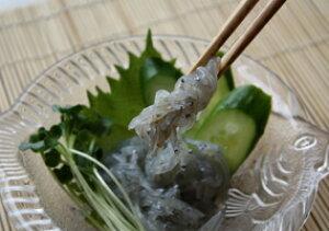 【#元気いただきますプロジェクト】生しらす 広島県 音戸産 発のブランド しらす ( 冷凍 )100gX1パック冷蔵品との同梱不可 生しらす丼 シラス 刺身 お刺身用 小分け