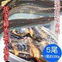 生うなぎ 活き締め 1尾約300gX5尾( 愛知県産 養殖 )バーベキューにも