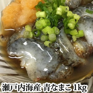 【#元気いただきますプロジェクト】青なまこ 活き 瀬戸内海産 1kg ナマコ 海鼠 なまこ 青 生
