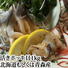 送料無料 殻付き ホッキ貝 ( 活き ほっき貝 北寄貝 ホッキガイ )1kg(3〜4個) 国産 北海道 青森 刺身