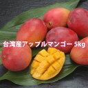 アップルマンゴー 台湾産 5kg 送料無料