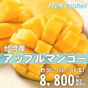 アップルマンゴー 台湾産 5kg【期間限定・送料無料】