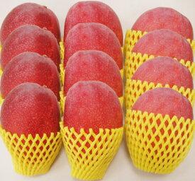 <送料無料!>おすそ分け、共同購入に便利!美味しいには理由と自信あり!幸せの台湾アップルマンゴー(アーウィン種)満足の5kg箱!(12個〜14個入)