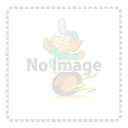 【サムコ SAMCO】 クーラントホースキット COOLANT HOSE KIT & ホースバンドキット FIAT 500 312/1.4系にお勧め! [標準カラー] [ホース3本+バンド] 品番:40TCS414/C
