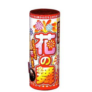 打上げ花火 花の舞(金時雨)