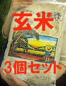 【まとめ買い】有機JAS認定 太陽の有機米(つがるロマン)玄米 15kg(5kg×3袋)※自然農法米 ※30年度米(TZ)※6月中旬頃〜新米への切替時期までは真空パック包装。他は通常包装)