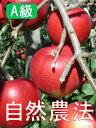 【A級品】竹嶋有機農園の自然農法りんごつがる <「5kg箱」入り>※常温配送※売り切れの際はご容赦ください