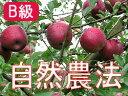 【B級品】竹嶋有機農園の自然農法りんご紅玉 <約9kg>※ワケあり・傷あり・家庭用